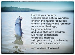 Here is your country. 