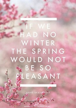 — No 