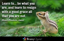 Learn to... be what you 