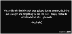 We are like the little branch that quivers during a storm, doubting 