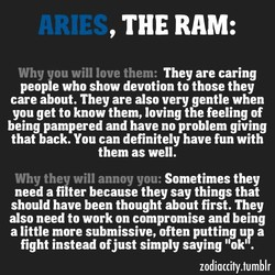 , THE RAM: 