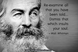 Re-examine all 
