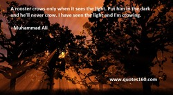 Aiooster crows only when it sees th ig t. ut dark, 