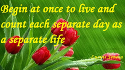 (B in t once to five and 