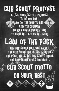 cue scouT PRcmiSE 