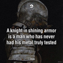 A knight in shining armor 