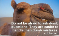 Do not be afraid to ask dumb 