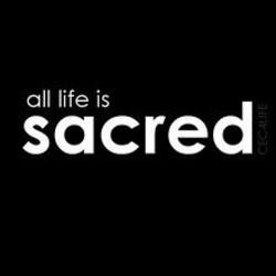 all life is 