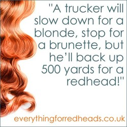 'IA trucker will 
