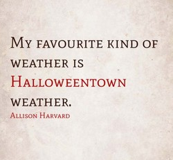 MY FAVOURITE KIND OF 