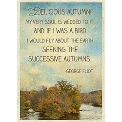 'ELICIOUS AUTUMN! 