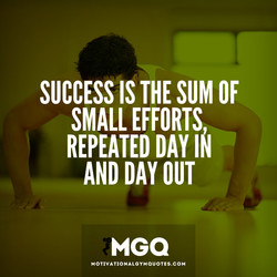 SUCCESSIS THE SUM OF 
