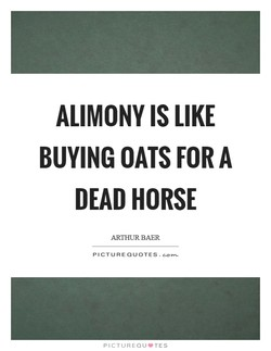 ALIMONY IS LIKE 