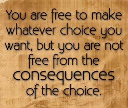 You are free to make