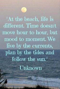 IIAt the beach, life is 