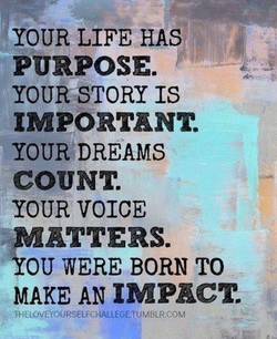YOUR LIFE HAS 