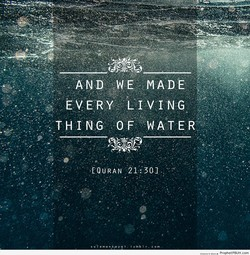 AND w E MADE 