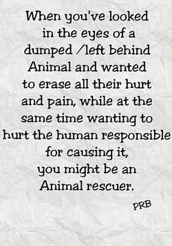 VVhen you've looked 