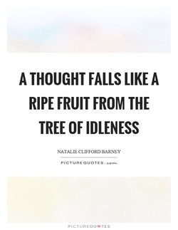 A THOUGHT FALLS LIKE A 