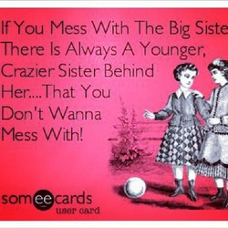 If You Mess With The Big Siste 