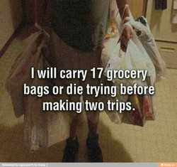 I will carry 17 grocery* 