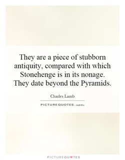 They are a piece of stubborn 
