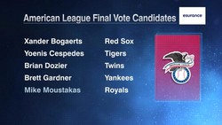 American League Final Vote Candidates 