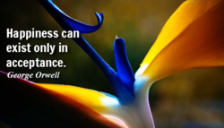 Happiness can exist only in acceptance. e Orwell