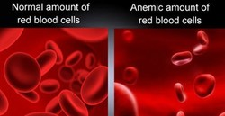Normal amount of 