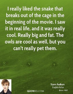 I really liked the snake that 