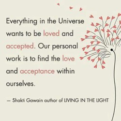 Everything in the Universe 