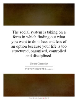 The social system is taking on a 