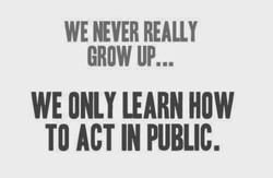 WE NEVER REALLY 