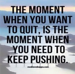 THEMOMENT 