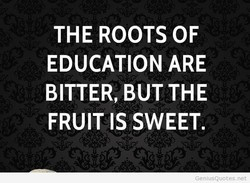 THE ROOTS OF 