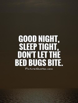 GOOD NIGHT, 