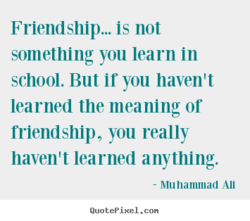 Friendship... is not 