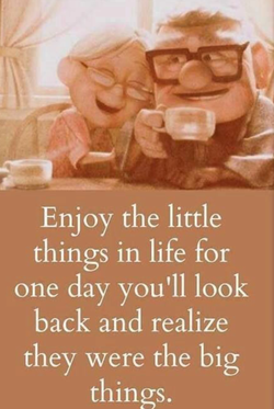 Enjoy the little 