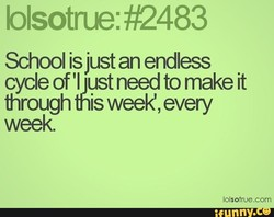 blsotrue: Q483 
