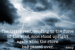 -Thelit reed,.bendäng o the force 