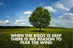 WHEN THE ROOT IS DEEP 