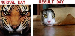 RESULT DAY 