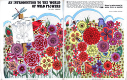 AN INTRODUCTION TO THE WORLD 