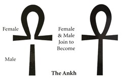 Female 