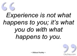 Experience is not what 