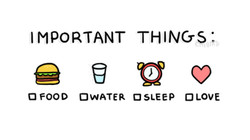 IMPORTANT THINGS ; 