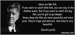 Ideas are like fish. 