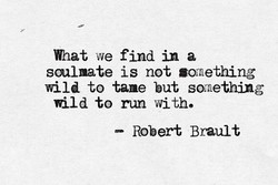 What we find in a 