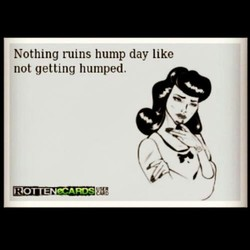 Nothing ruins hump day like 