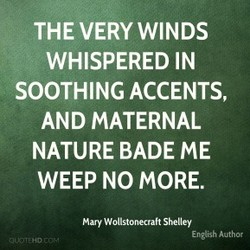 THE VERY WINDS 